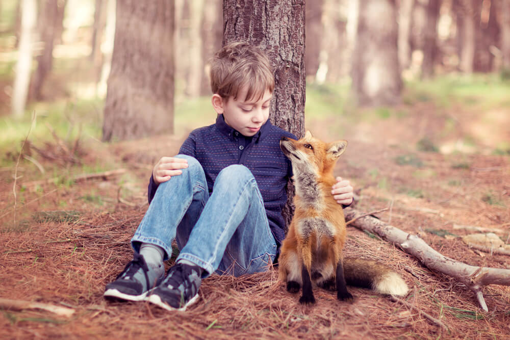 The-Little-Prince-and-Fox-1000px